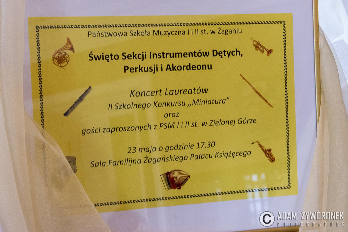 Koncert laureatów.