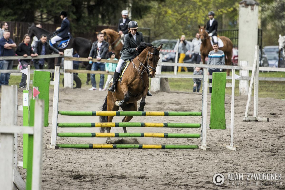 Towarzyskie zawody jeździeckie w skokach przez przeszkody w Kliczkowie ALBUM 2